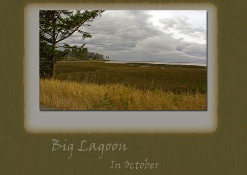 Big Lagoon web