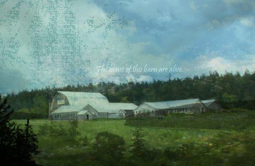 Duplicate barns merged